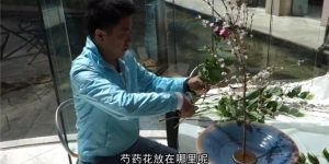 中国人観光客 池坊いけばな体験